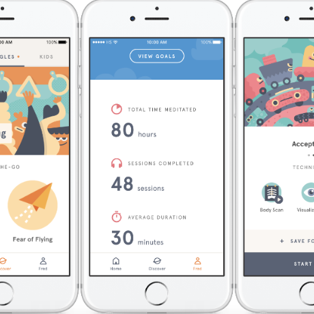 Wellness app review